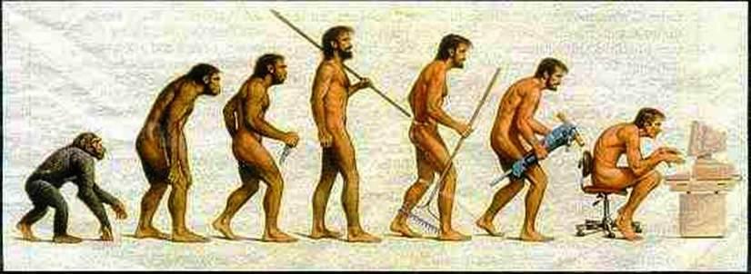 evolusi-manusia1